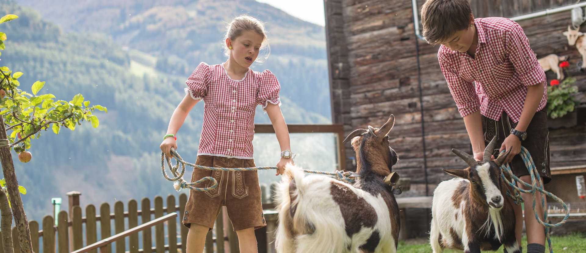 Oberkoflhof-Ahrntal-Urlaub