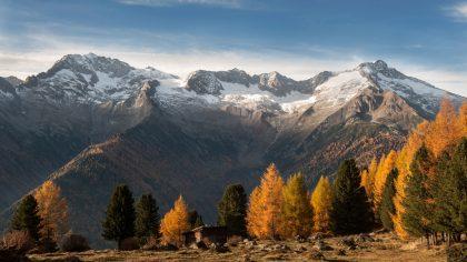 Ahrntal-Schwarzenstein-Gletscher